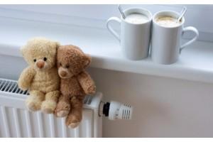 Центральное отопление или электрическое индивидуальное отопление: что выгоднее?